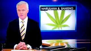 Marijuana & Banking on CBS Evening News