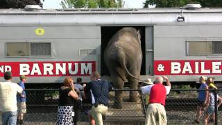 Ringling Brothers And Barnum & Bailey Circus Train At Hershey