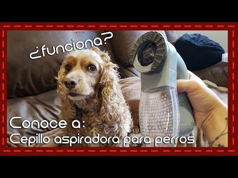 Conoce a: Cepillo aspiradora para pelo de perro