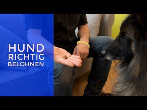 Rückenschmerzen in der Wirbelsäule Behandlung