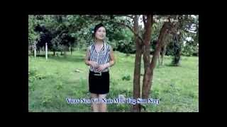Hmong new song 2014 nkauj iab lauj   Nco vibnais