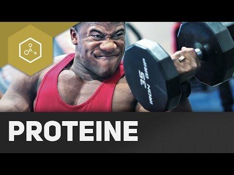 Proteine - Eiweiße ● Gehe auf SIMPLECLUB.DE/GO & werde #EinserSchüler
