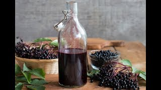 How to Make Elderberry Syrup to Avoid the Flu