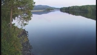 Озеро карпысак рыбалка новосибирск