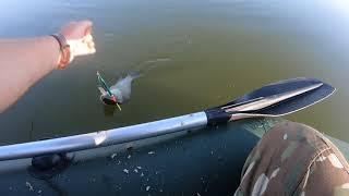 Рыбалка в челябинской области озеро мыркай