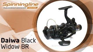 Daiwa black widow br 5000