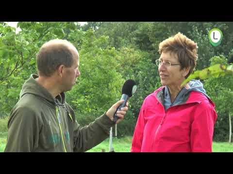 Torenbosje houdt zaterdag open huis in kader van Tulpenroute