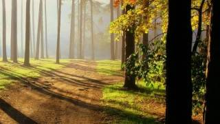 Along The Road ~ Dan Fogelberg [ CC ]