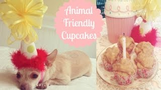 Baking Cuties Birthday Cupcakes! Doggy Cupcakes! Cupcakes For Animals!