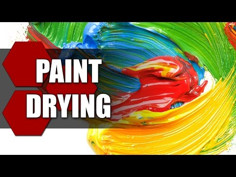 Paint Drying - TheHiveLeader