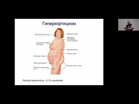 Кравчук Е. К.  Гормональные причины ожирения.