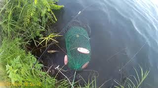 Рыбалка на лефу приморский край