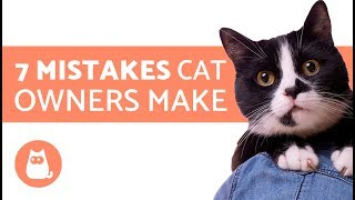 7 Mistakes cat owners make