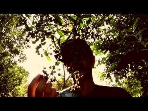 Zoën & MC Homeless - 'Dream World'