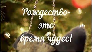 Рождество это время чудес!