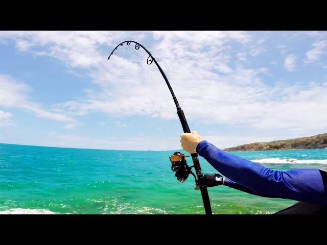 Shark Attacks my Mackerel!!! | Fishing Tropical Islands with Dennis Verreet Part 1