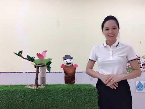 Video Hoạt động của khối 3-4 tuổi
