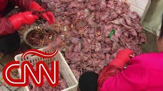 Coronavirus de Wuhan: repulsivas imágenes del mercado donde se originó el brote y la alerta mundial