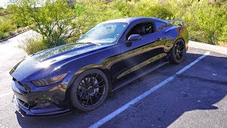The BEST $300 I have ever spent on my Mustang GT - Eibach Sportline Review