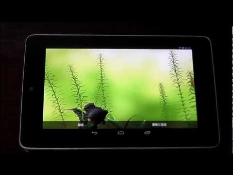 Video of Gold Fish 3D Live Wallpaper
