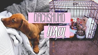 PUPPY HAUL | THE ESSENTIALS