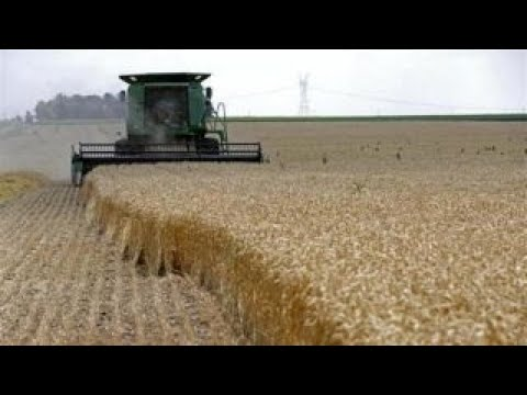 Impact of technology on farming