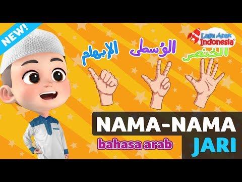 Lagu anak islam   nama jari bahasa arab   lagu anak indonesia