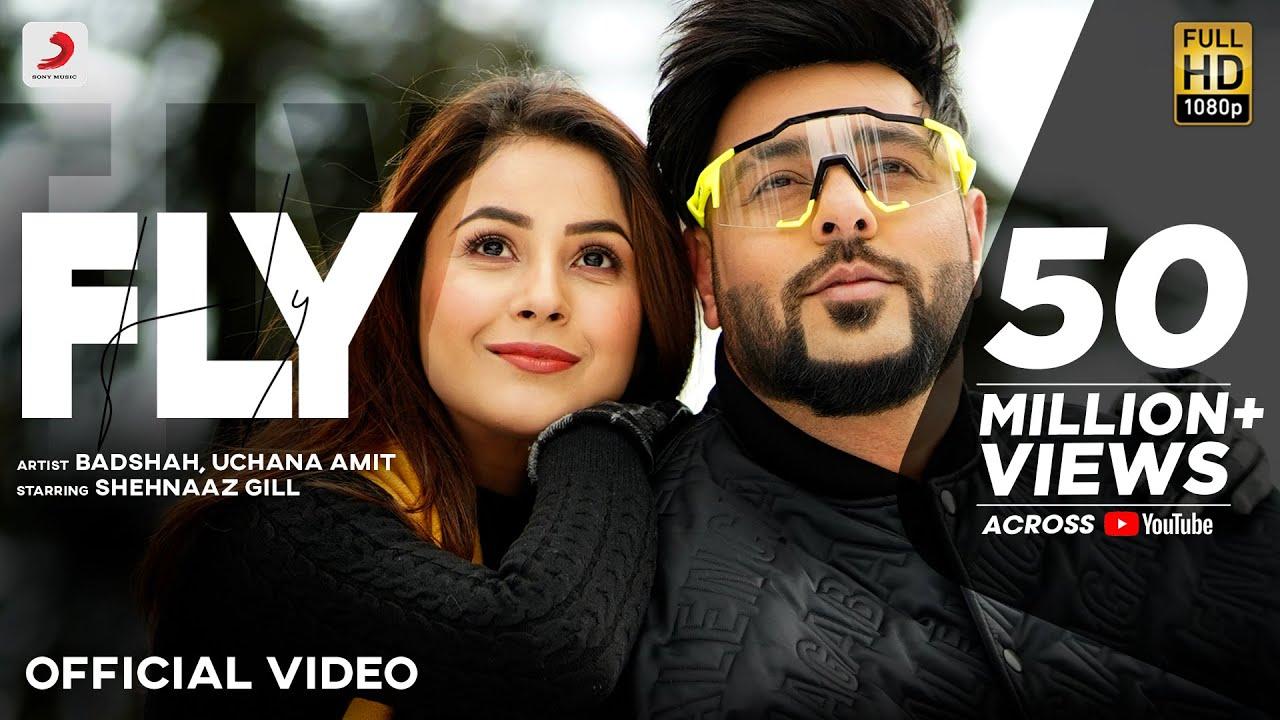 Badshah - Fly फ्लाई Fly Lyrics  | Shehnaaz Gill | Uchana Amit | D Soldierz | Lyrics 021
