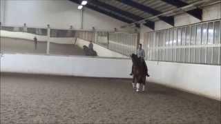 video of Diva Rubina II