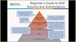 Explore the basic architecture of SAP Security and Authorizations