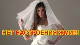 ЛУЧШИЕ ПРИКОЛЫ СВАДЬБА 18+ #2 BEST WEDDING 18+ Jokes #2