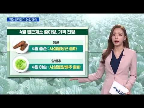 [영농길라잡이 농업관측] 엽근채소, 양념채소 4월 관측 이미지