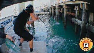 Florida Fishing: Big Snook in Tight Spots