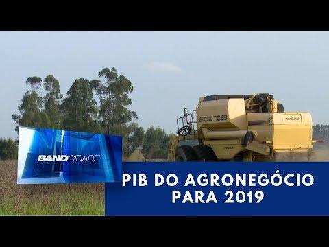PIB do Agronegócio deve crescer 2% em 2019