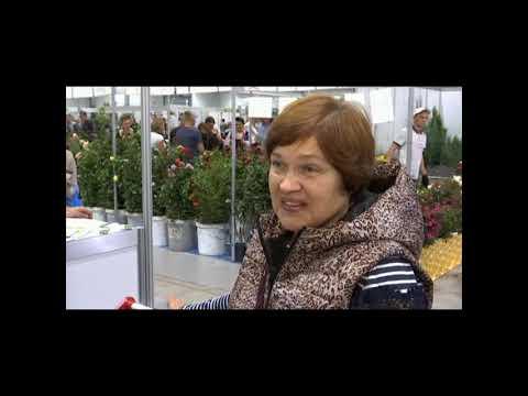 Репортаж с Кубанской Ярмарки от телеканала Планета-Агро
