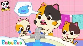 ★NEW★小貓咪被燙傷了,好痛!可怕的熱水不要摸   居家安全兒歌   童謠   動畫   卡通   寶寶巴士   奇奇   妙妙