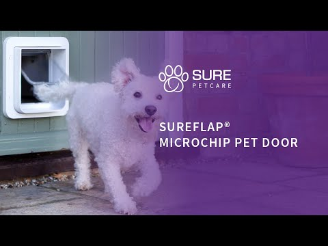 Microchip Cat Flaps Great Deals At Zooplus Sureflap Microchip Pet