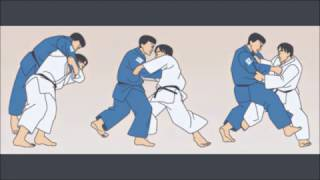 Video tutorial de Judo