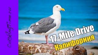 17-Mile Drive - самая красивая дорога в мире - Путешествие по Калифорнии / California, USA / gopro