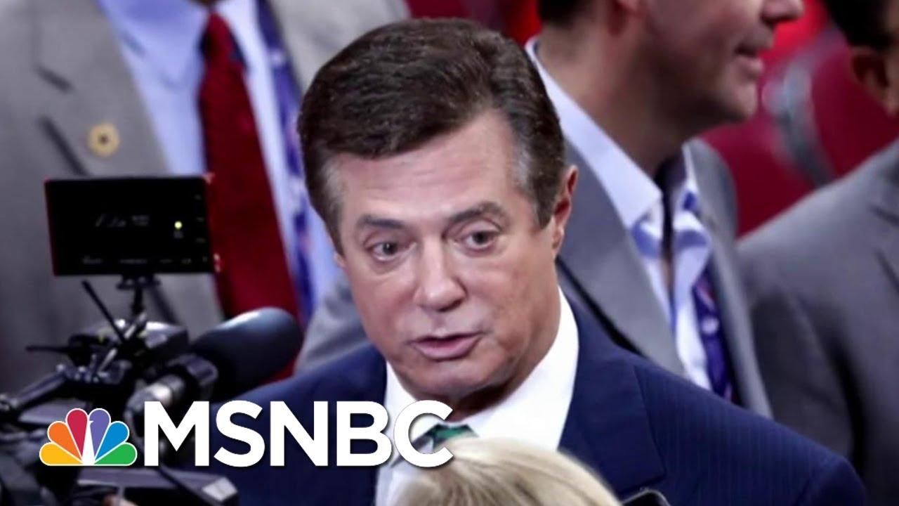 Law Scholar Jonathan Turley: Paul Manafort No-Knock Warrant 'Excessive'   Morning Joe   MSNBC thumbnail