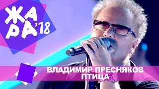 Владимир Пресняков  - Птица  (ЖАРА В БАКУ Live, 2018)