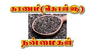 Benefit Of Kanam In Tamil (காணம்  நன்மைகள்)