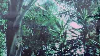 Pinkshinyultrablast - Umi