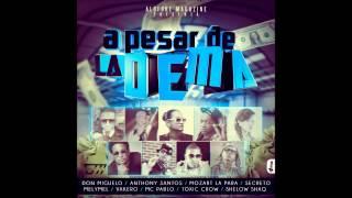"""ALOFOKE MAGAZINE """"El Album"""" PRESENTA: A pesar De La Dema"""