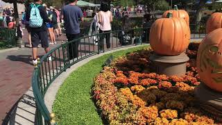 Wayfinding In Disneyland