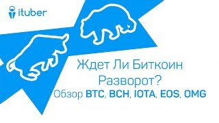 Ждет Ли Биткоин Разворот? Обзор BitCoin BTC, BitCoinCash BCH, IOTA MIOTA, OmiseGo OMG, EOS, ICON ICX