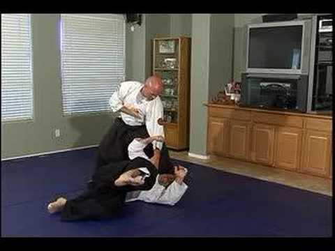 Advanced Aikido: Principles of Motion : Advanced Aikido Techniques: Kick & Punch Combo Part 2