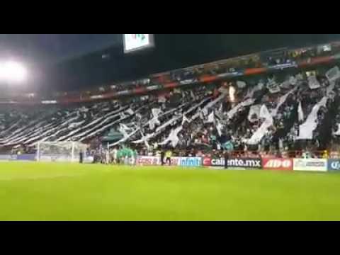 """RECIBIMIENTO ULTRA TUZA. PACHUCA VS MONTERREY"" Barra: Barra Ultra Tuza • Club: Pachuca"