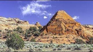 Rastúce megality zo živých kameňov