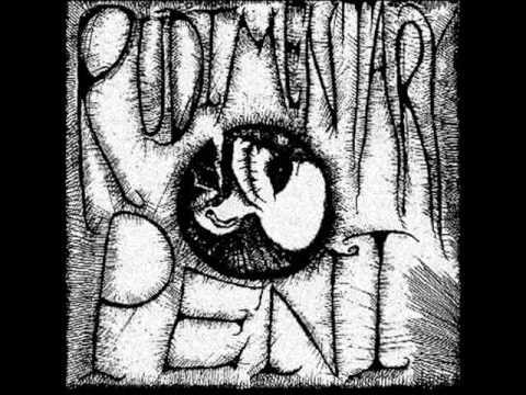 Rudimentary Peni - Inside